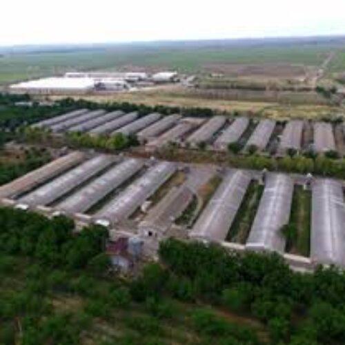 فروش کارخانه در ساری شمال کشور