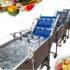 دستگاه شستشو میوه و سبزی
